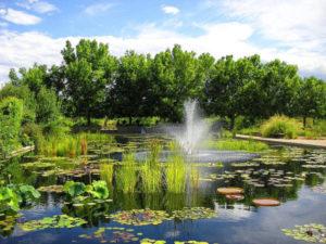Denver botanic gardens city attraction