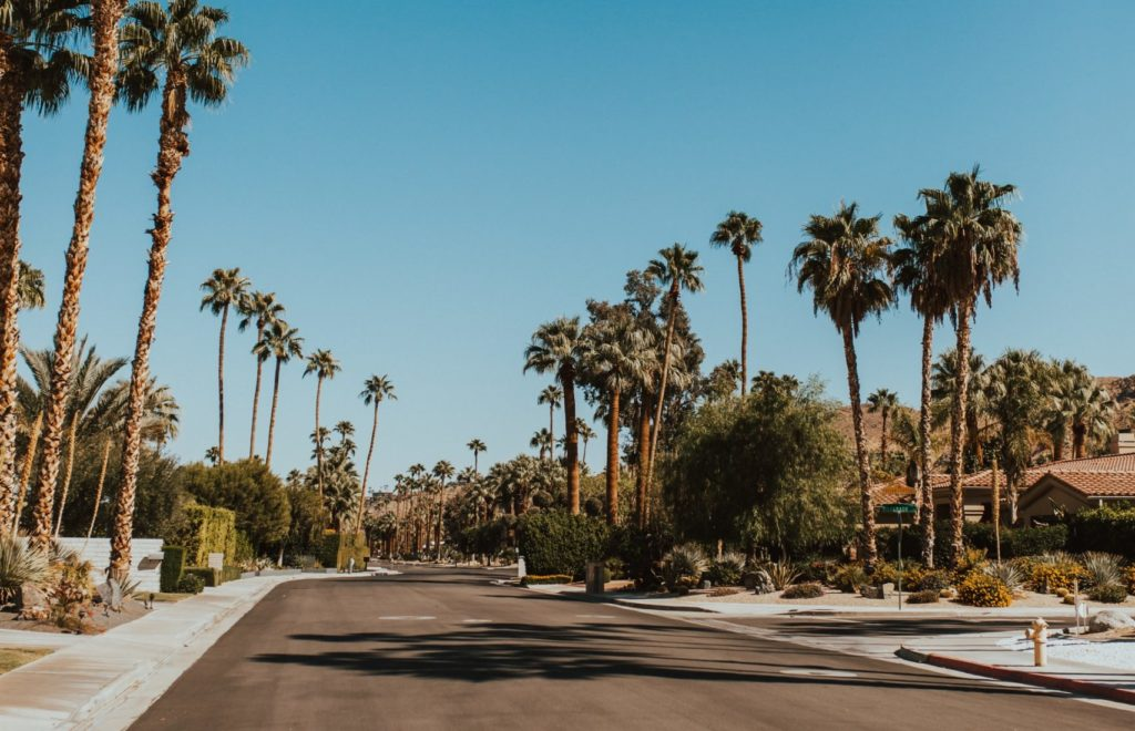 Palm Trees in California, highlighting Adventure Touring Cookies Policy